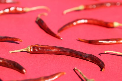 Chile de Arbol (Arbol Chili Pepper)
