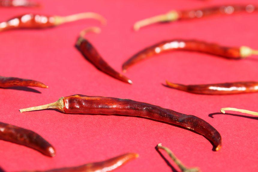 Chile de Arbol (Arbol Chili Pepper)